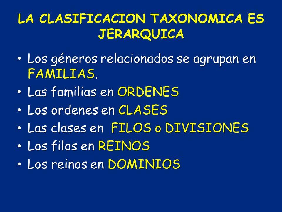 LA CLASIFICACION TAXONOMICA ES JERARQUICA