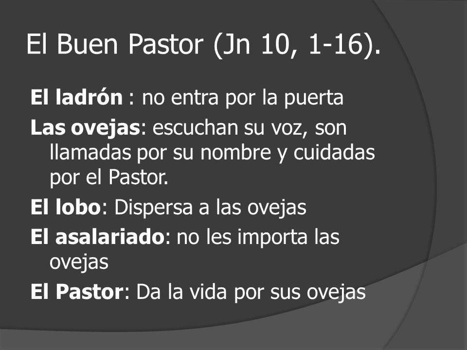 El Buen Pastor (Jn 10, 1-16).