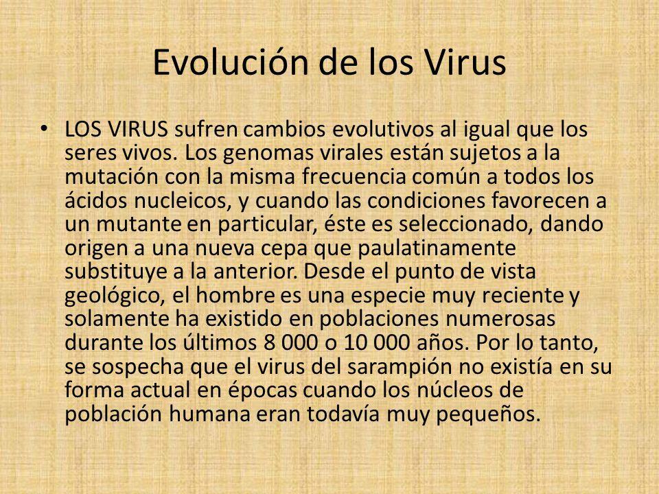 Evolución de los Virus