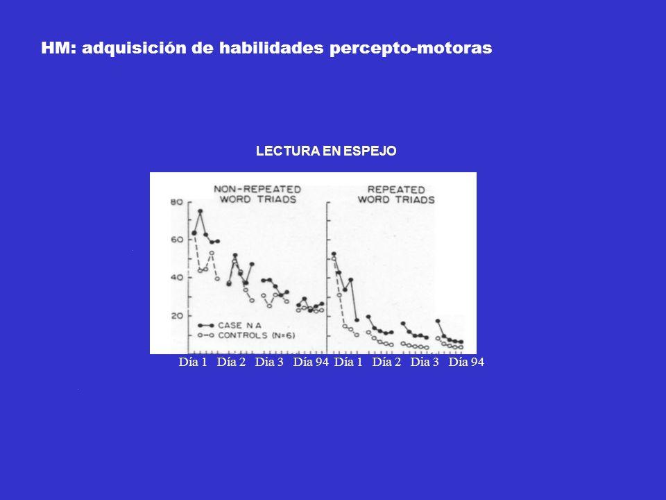 HM: adquisición de habilidades percepto-motoras