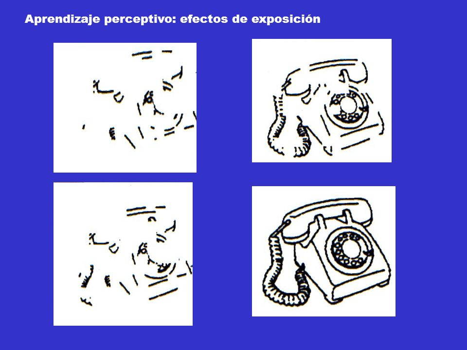 Aprendizaje perceptivo: efectos de exposición