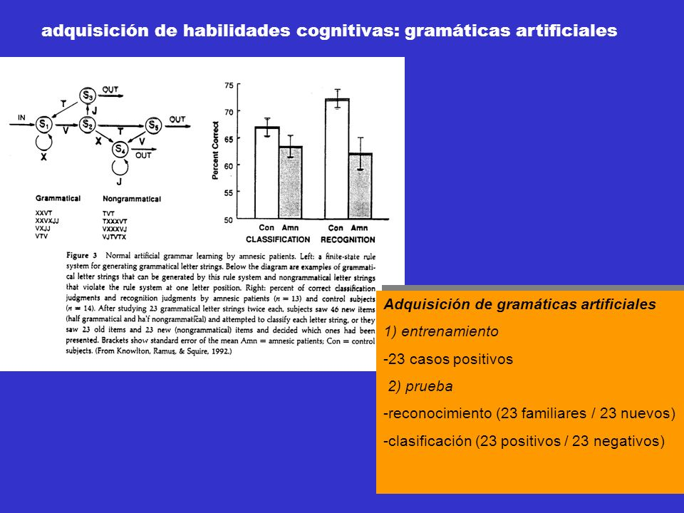 adquisición de habilidades cognitivas: gramáticas artificiales