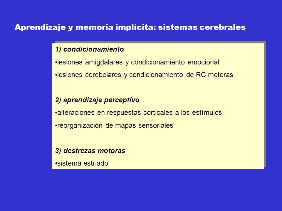Aprendizaje y memoria implícita: sistemas cerebrales