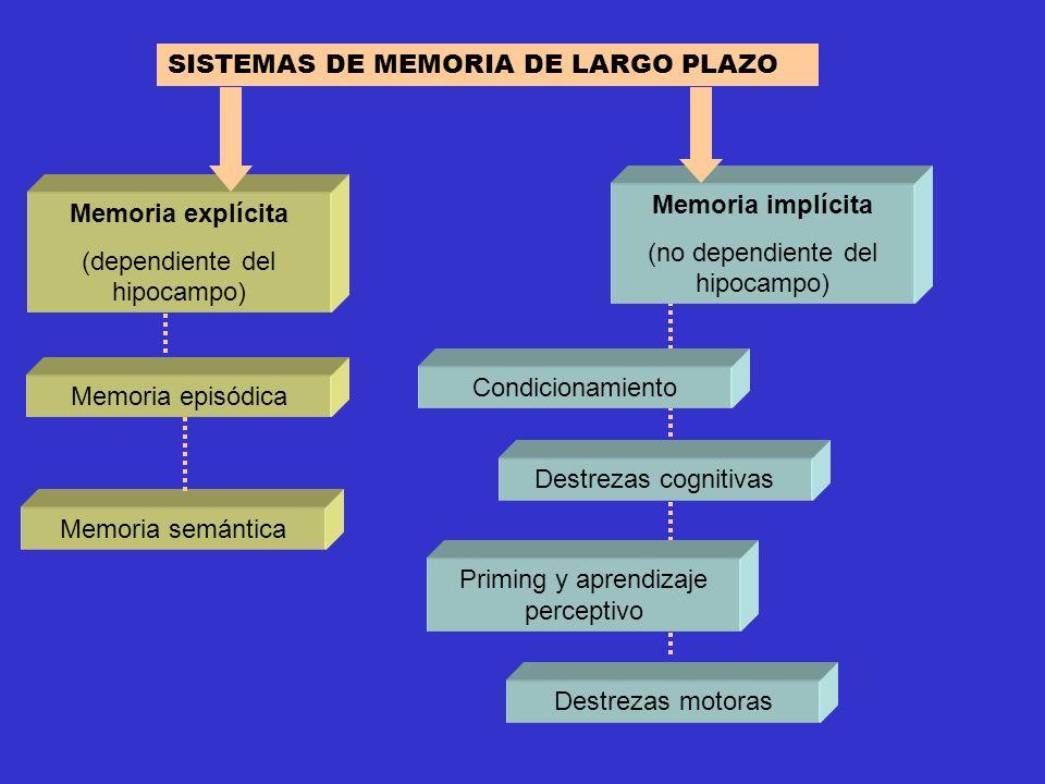 SISTEMAS DE MEMORIA DE LARGO PLAZO