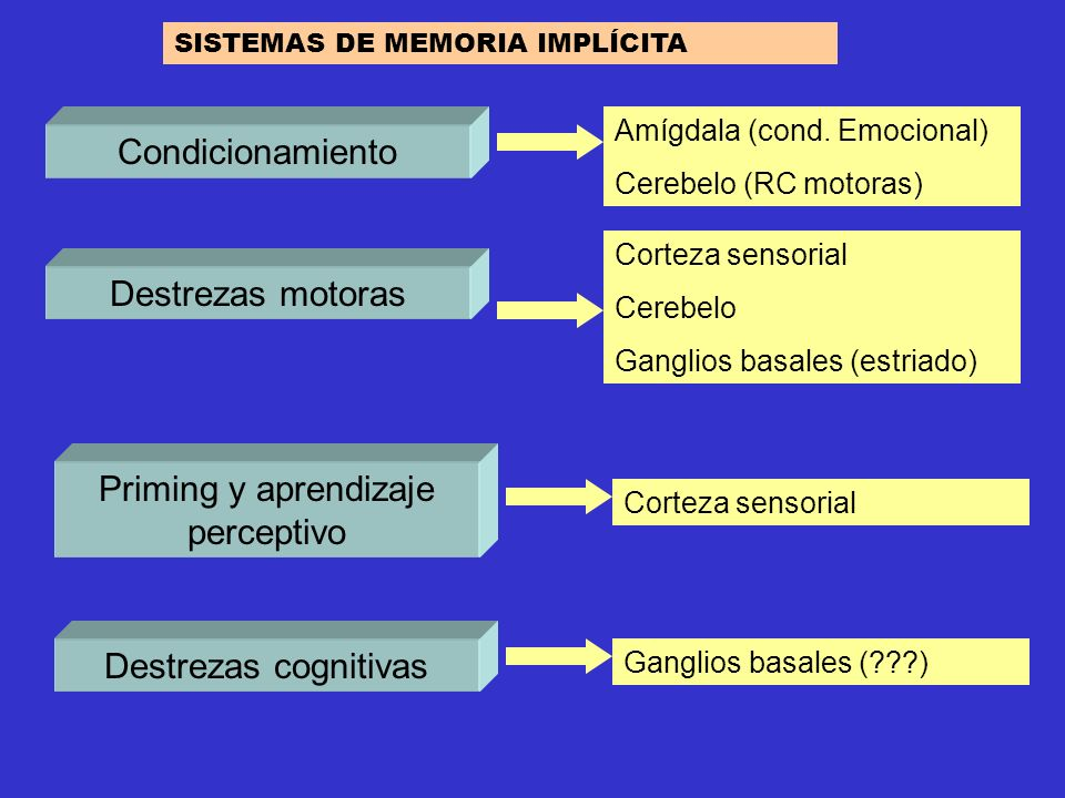Priming y aprendizaje perceptivo