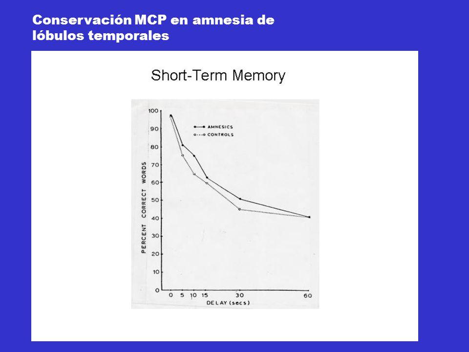 Conservación MCP en amnesia de lóbulos temporales