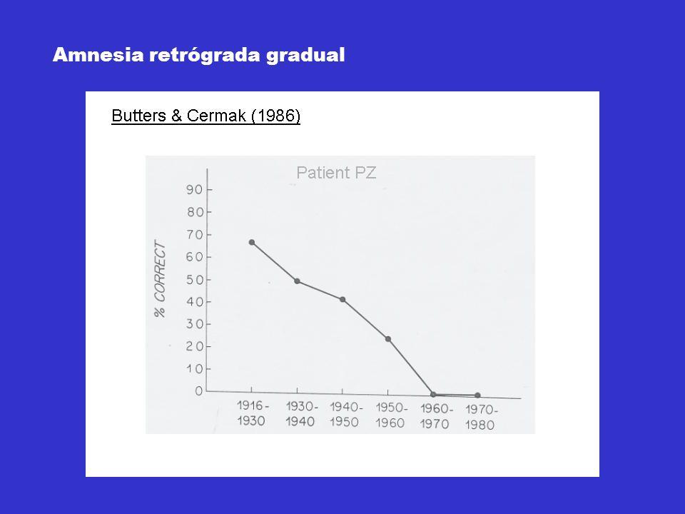 Amnesia retrógrada gradual
