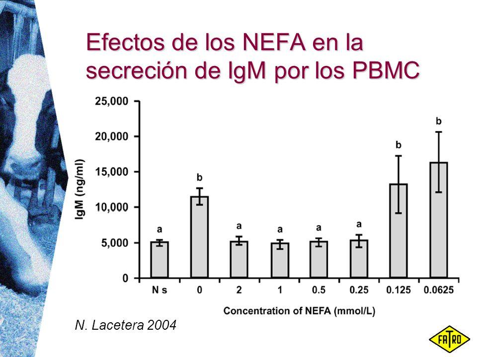Efectos de los NEFA en la secreción de IgM por los PBMC