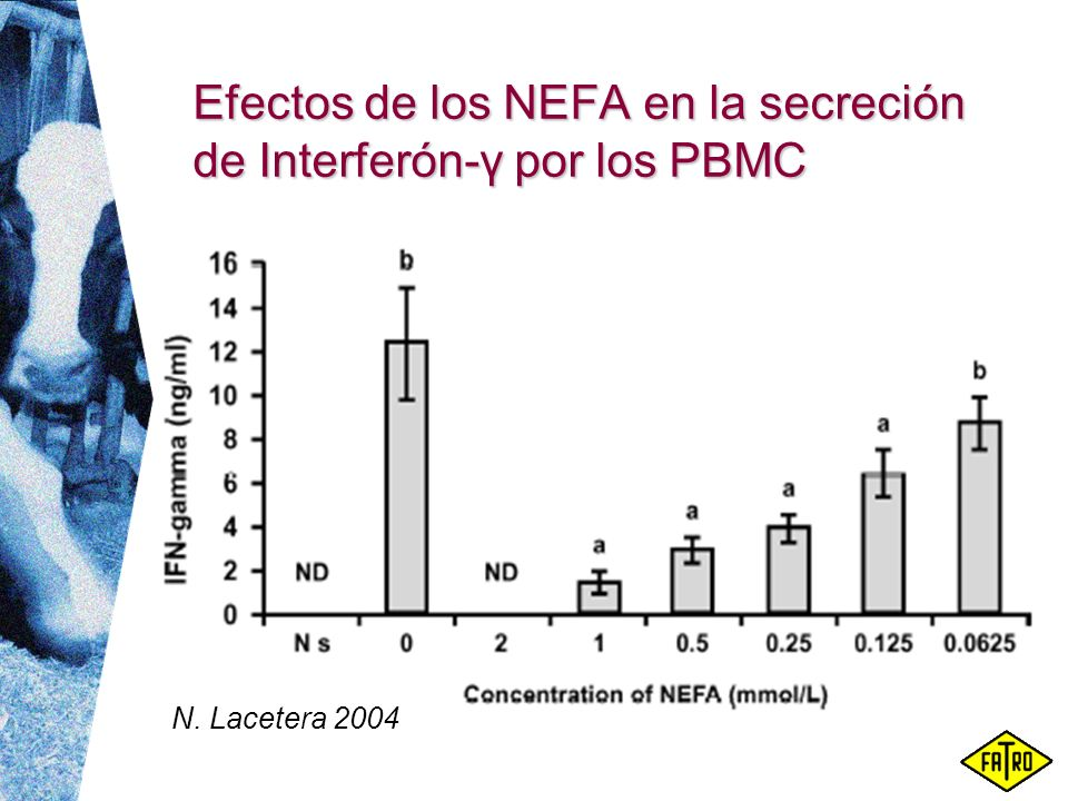 Efectos de los NEFA en la secreción de Interferón-γ por los PBMC