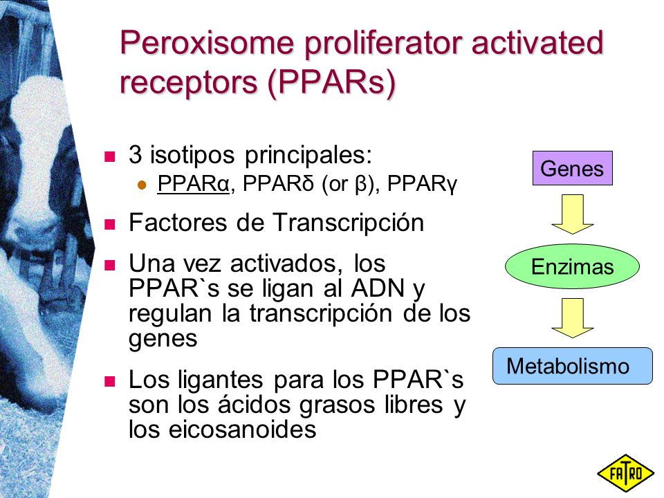 Peroxisome proliferator activated receptors (PPARs)
