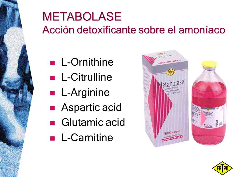 METABOLASE Acción detoxificante sobre el amoníaco