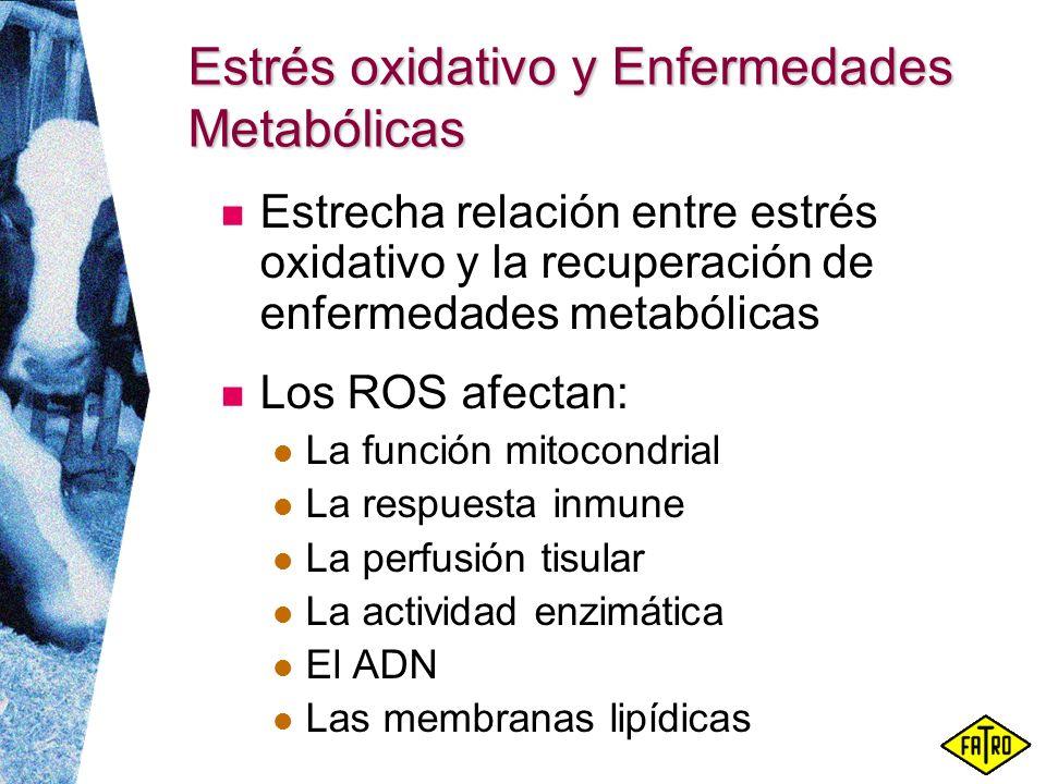 Estrés oxidativo y Enfermedades Metabólicas