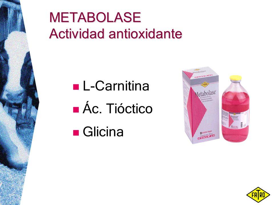 METABOLASE Actividad antioxidante