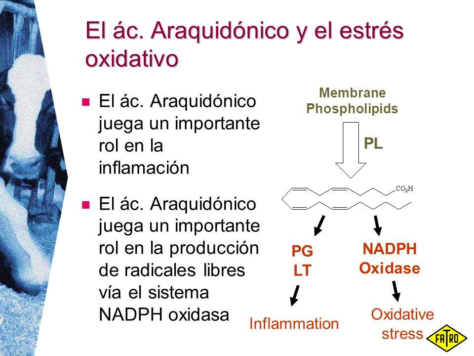 El ác. Araquidónico y el estrés oxidativo