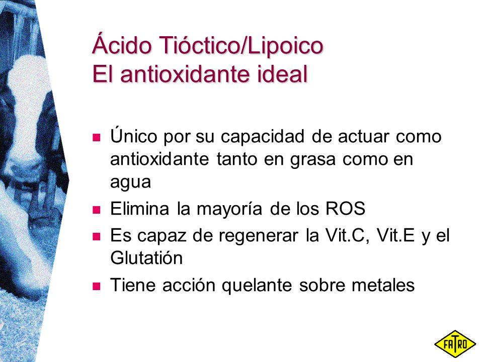 Ácido Tióctico/Lipoico El antioxidante ideal
