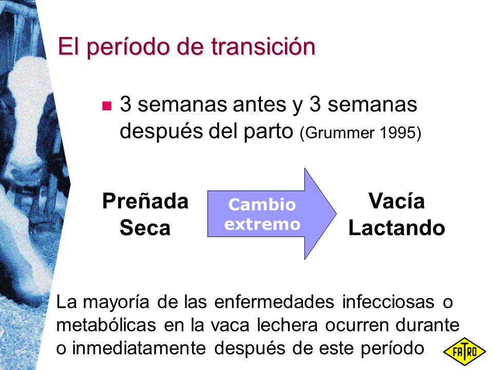 El período de transición