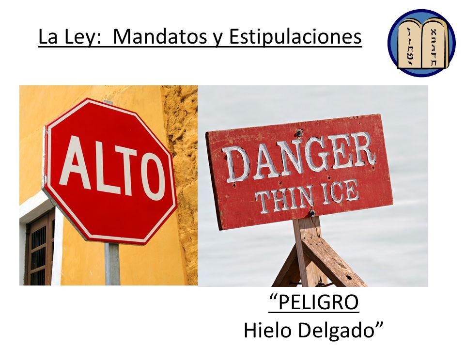 La Ley: Mandatos y Estipulaciones