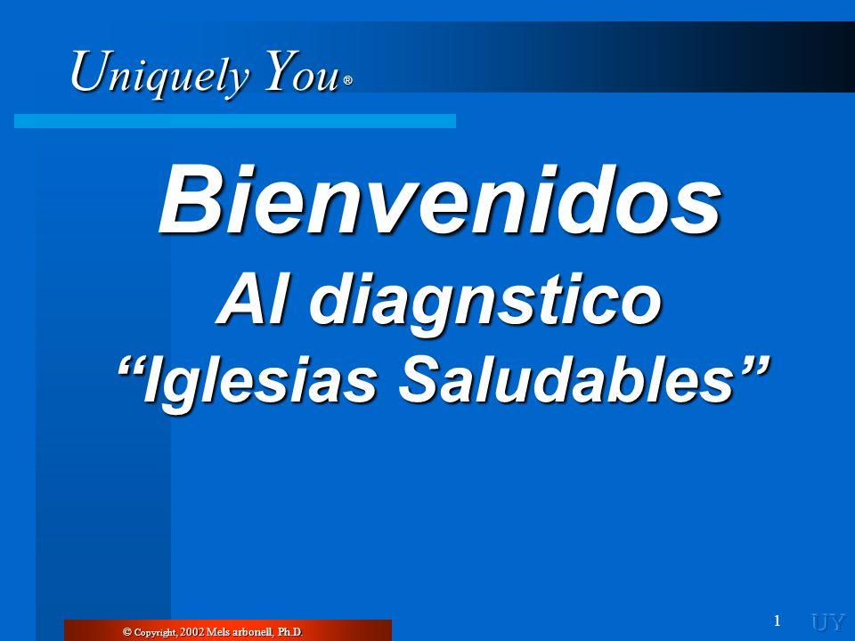 Al diagnstico Iglesias Saludables