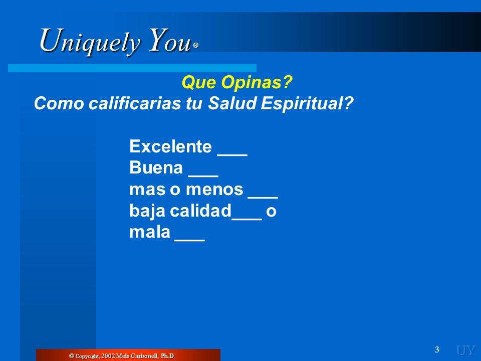 Como calificarias tu Salud Espiritual Excelente ___ Buena ___