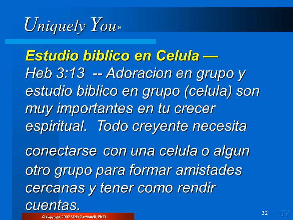 Estudio biblico en Celula —