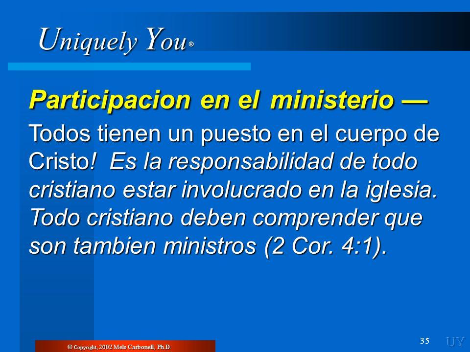 Participacion en el ministerio —