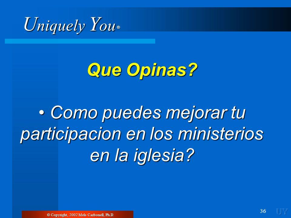 Que Opinas. • Como puedes mejorar tu participacion en los ministerios en la iglesia.