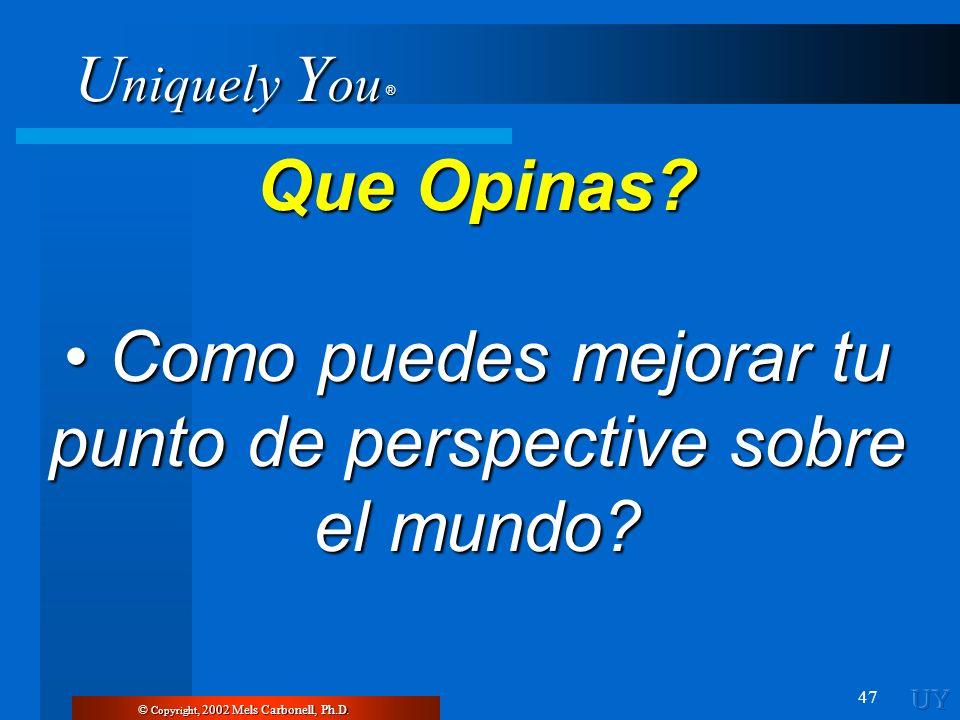 • Como puedes mejorar tu punto de perspective sobre el mundo