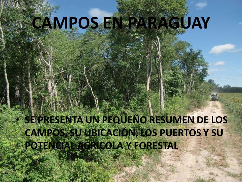 CAMPOS EN PARAGUAY SE PRESENTA UN PEQUEÑO RESUMEN DE LOS CAMPOS, SU UBICACIÓN, LOS PUERTOS Y SU POTENCIAL AGRICOLA Y FORESTAL.
