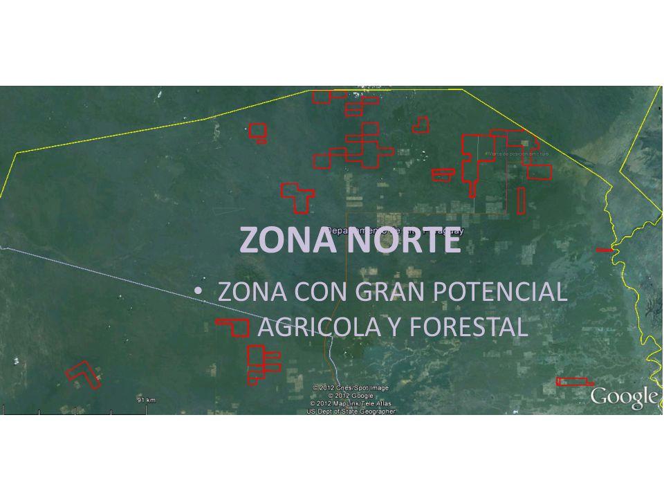 ZONA CON GRAN POTENCIAL AGRICOLA Y FORESTAL