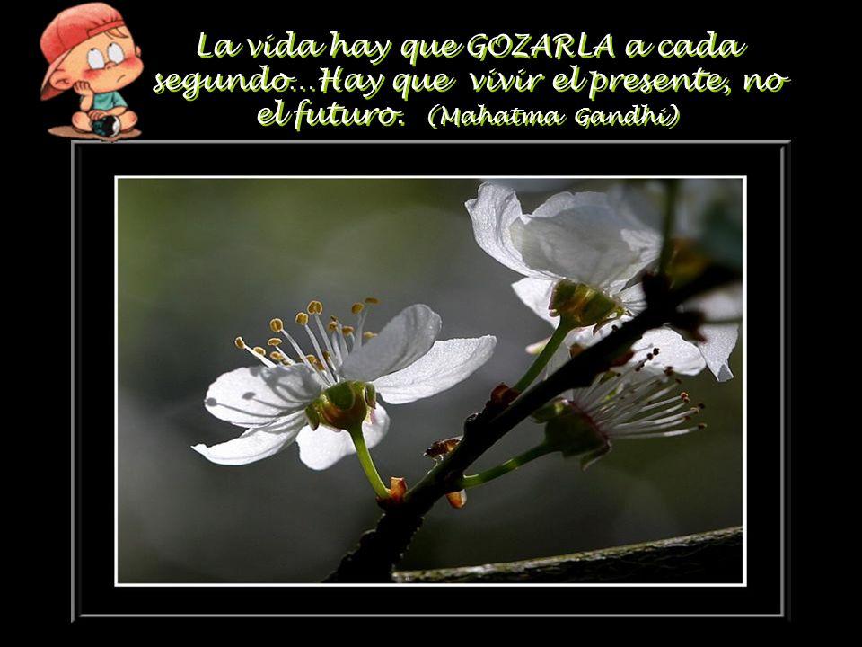 La vida hay que GOZARLA a cada segundo…Hay que vivir el presente, no el futuro. (Mahatma Gandhi)