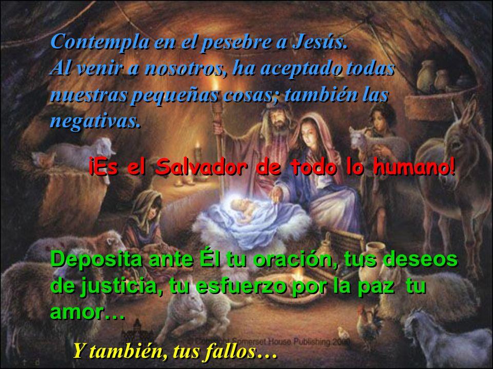 Contempla en el pesebre a Jesús.