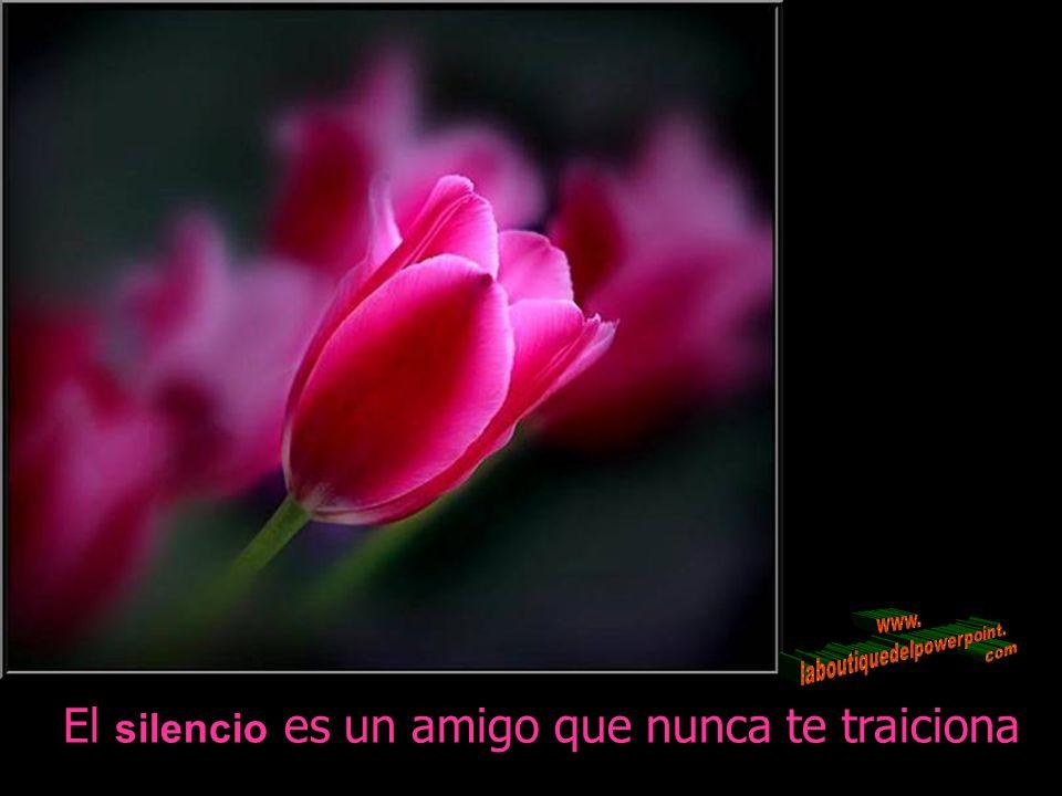 El silencio es un amigo que nunca te traiciona