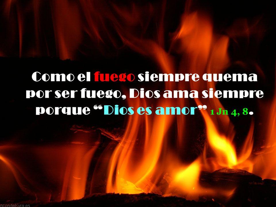Como el fuego siempre quema por ser fuego, Dios ama siempre porque Dios es amor 1 Jn 4, 8.