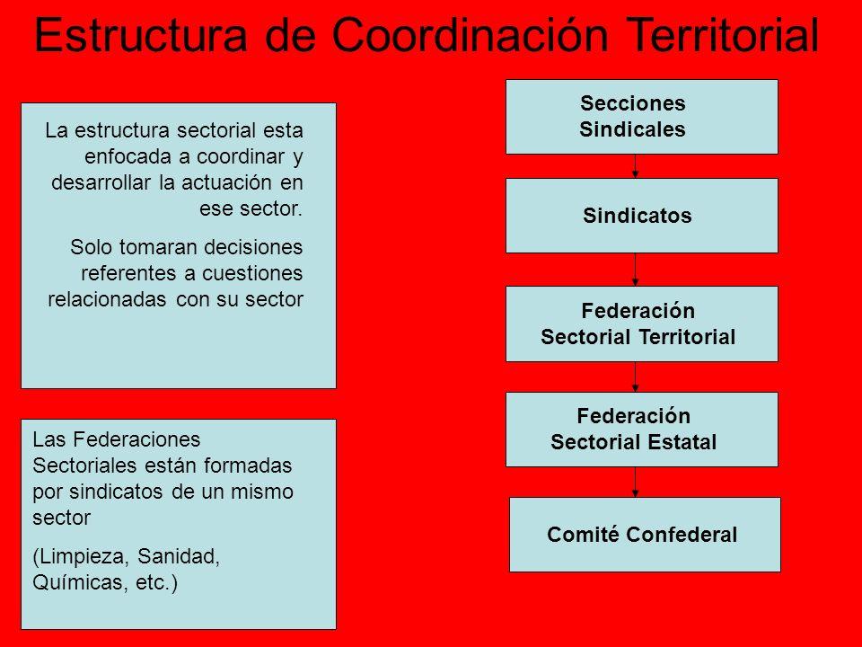 Federación Sectorial Territorial Federación Sectorial Estatal