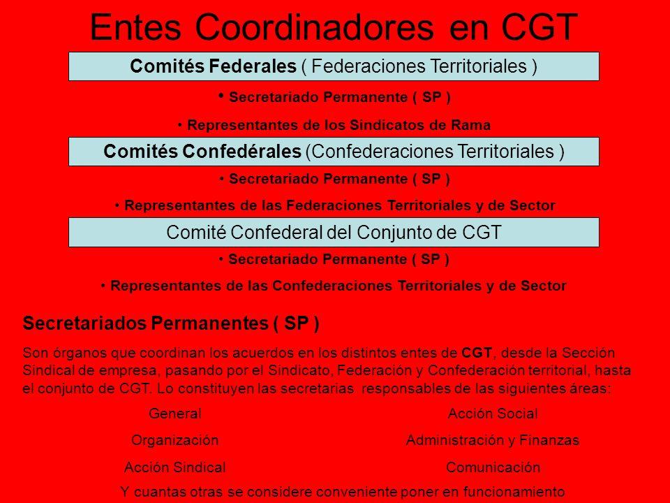 Entes Coordinadores en CGT