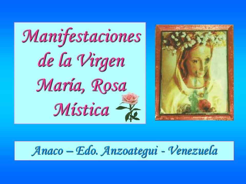 Manifestaciones de la Virgen María, Rosa Mística