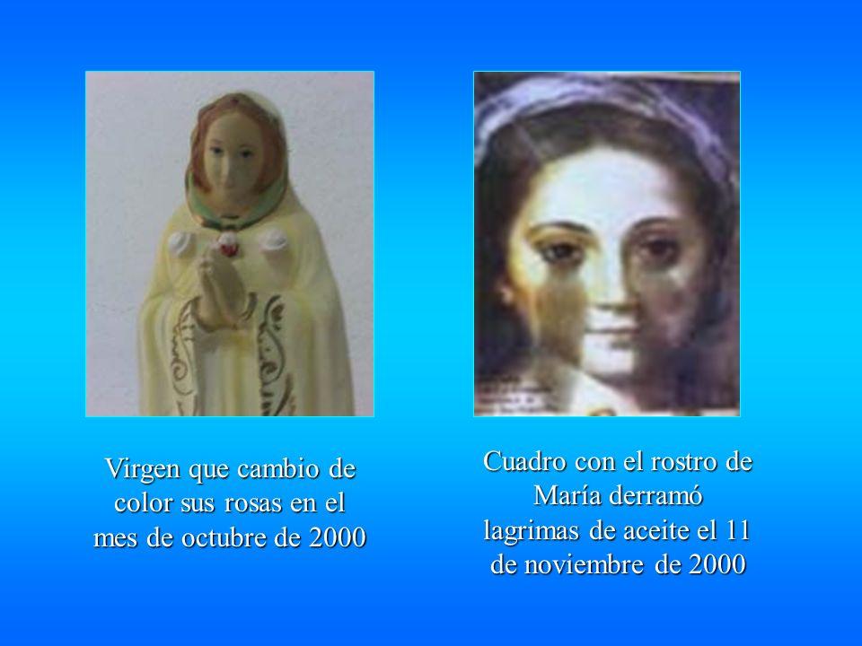 Virgen que cambio de color sus rosas en el mes de octubre de 2000