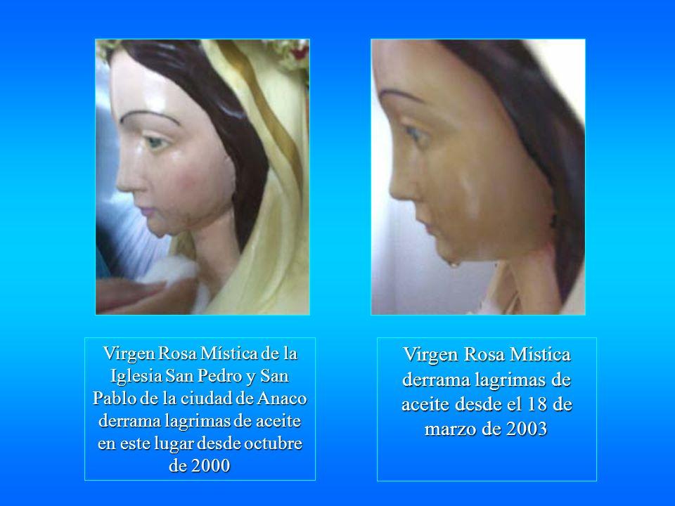 Virgen Rosa Mística de la Iglesia San Pedro y San Pablo de la ciudad de Anaco derrama lagrimas de aceite en este lugar desde octubre de 2000