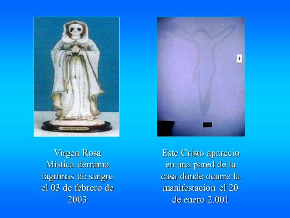 Virgen Rosa Mistica derramo lagrimas de sangre el 03 de febrero de 2003