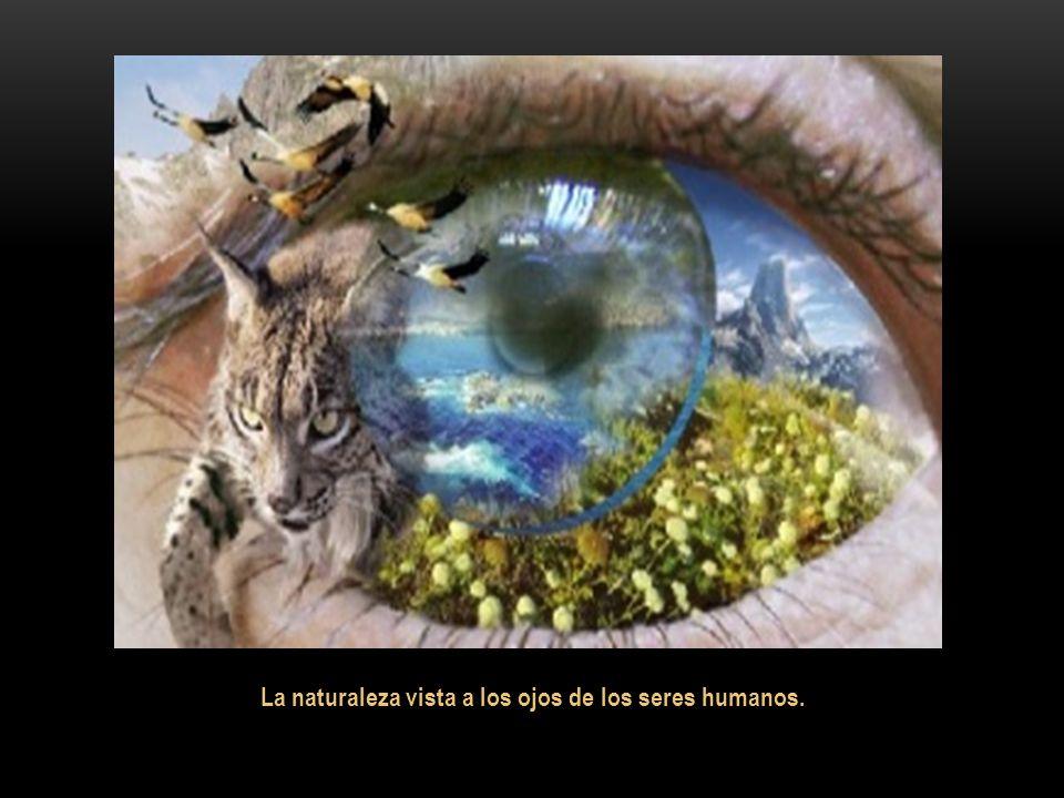 La naturaleza vista a los ojos de los seres humanos.