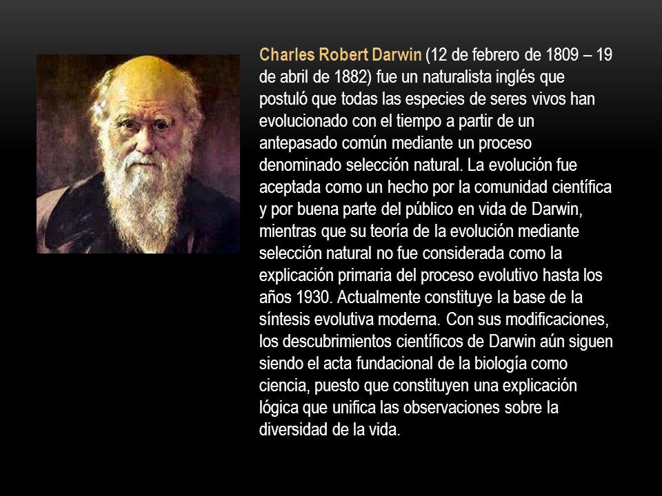 Charles Robert Darwin (12 de febrero de 1809 – 19 de abril de 1882) fue un naturalista inglés que postuló que todas las especies de seres vivos han evolucionado con el tiempo a partir de un antepasado común mediante un proceso denominado selección natural.