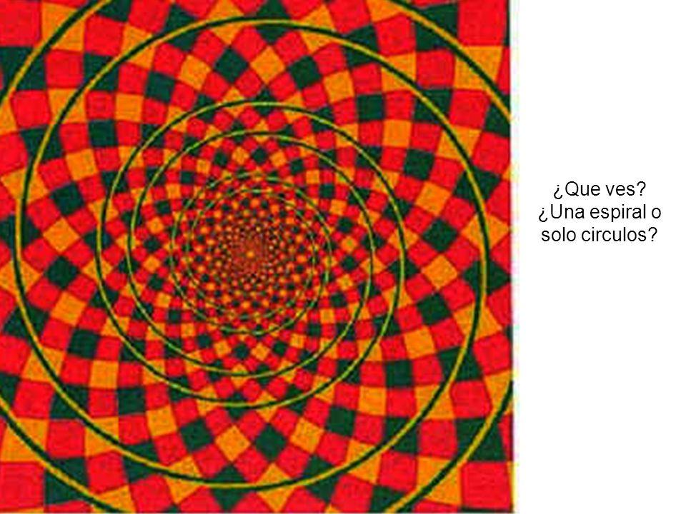 ¿Que ves ¿Una espiral o solo circulos