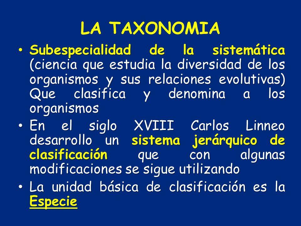 LA TAXONOMIA
