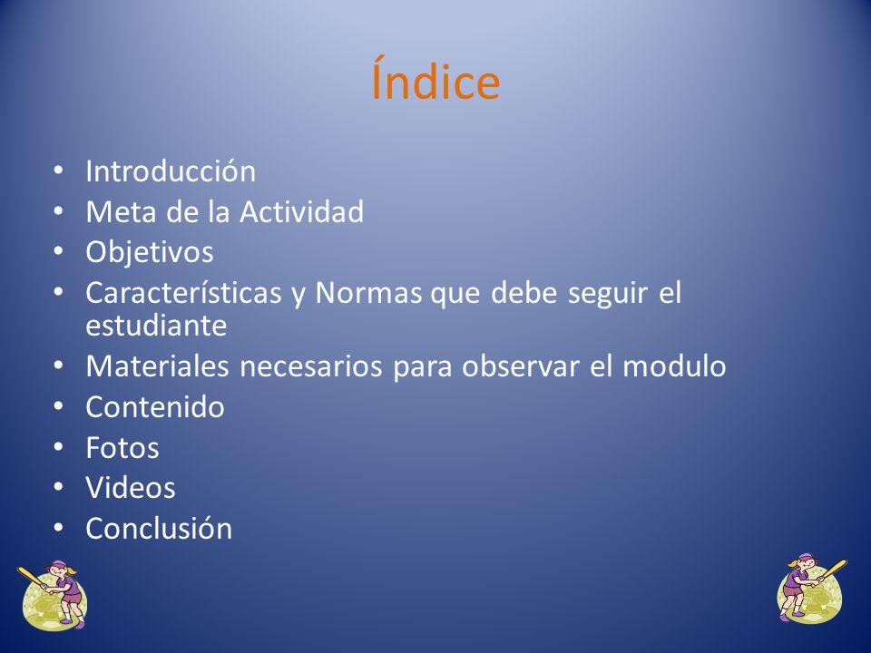 Índice Introducción Meta de la Actividad Objetivos
