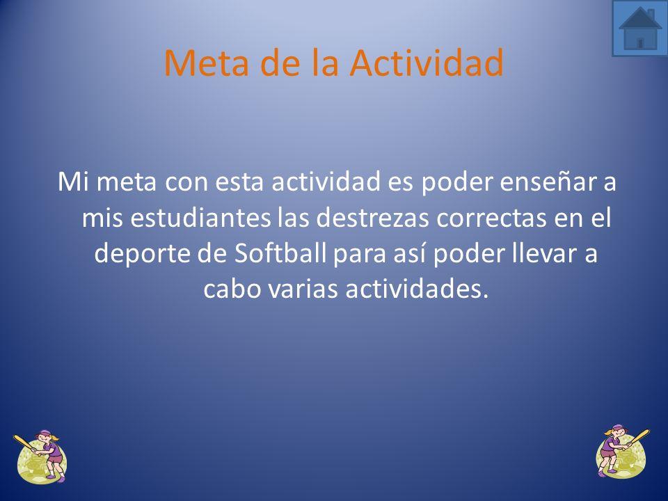 Meta de la Actividad