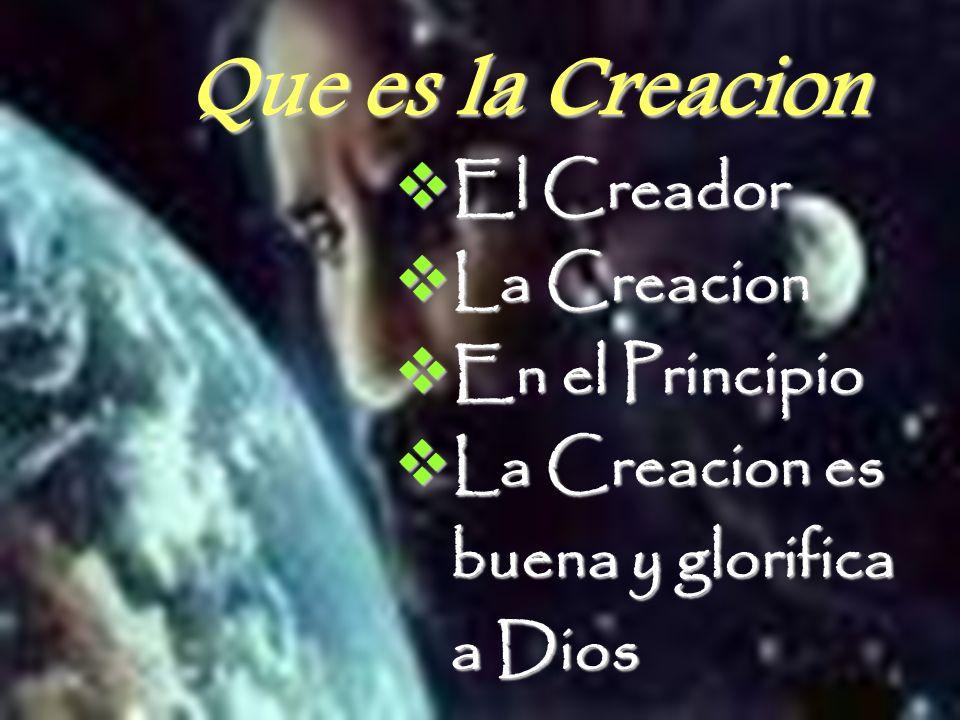 Que es la Creacion El Creador La Creacion En el Principio