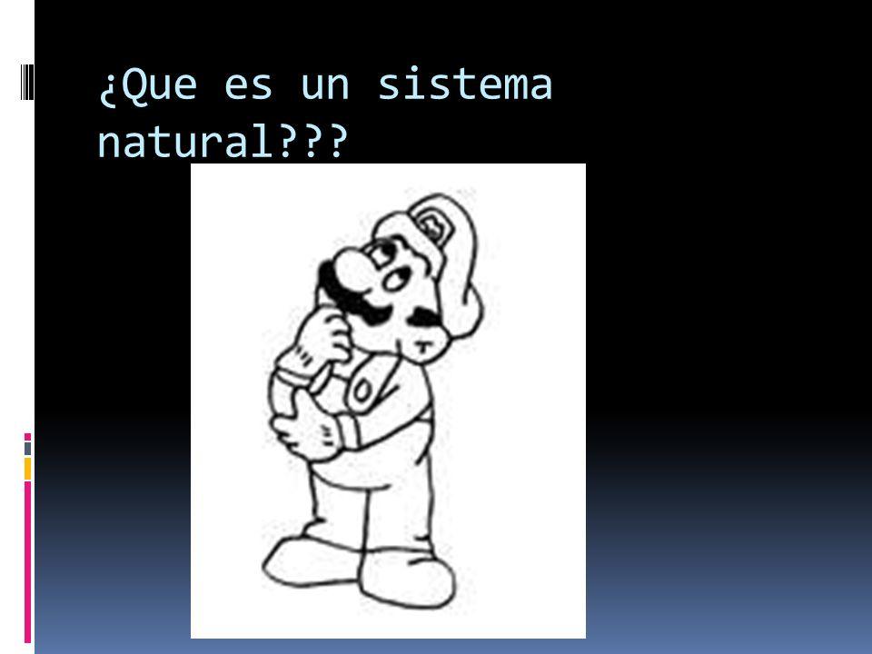 ¿Que es un sistema natural