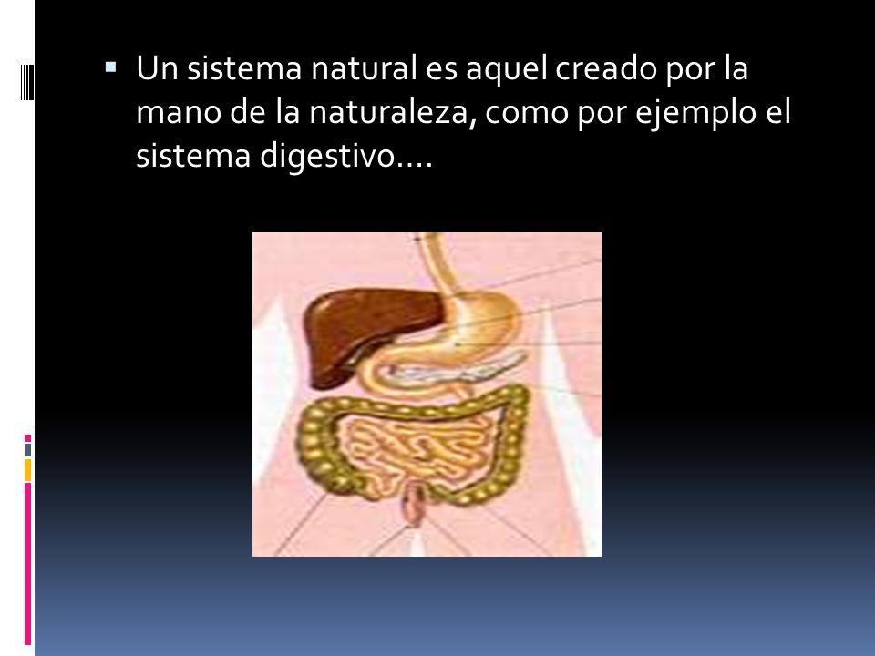 Un sistema natural es aquel creado por la mano de la naturaleza, como por ejemplo el sistema digestivo….