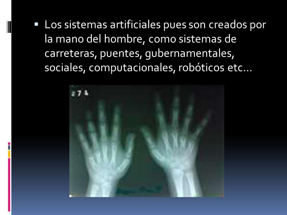 Los sistemas artificiales pues son creados por la mano del hombre, como sistemas de carreteras, puentes, gubernamentales, sociales, computacionales, robóticos etc…