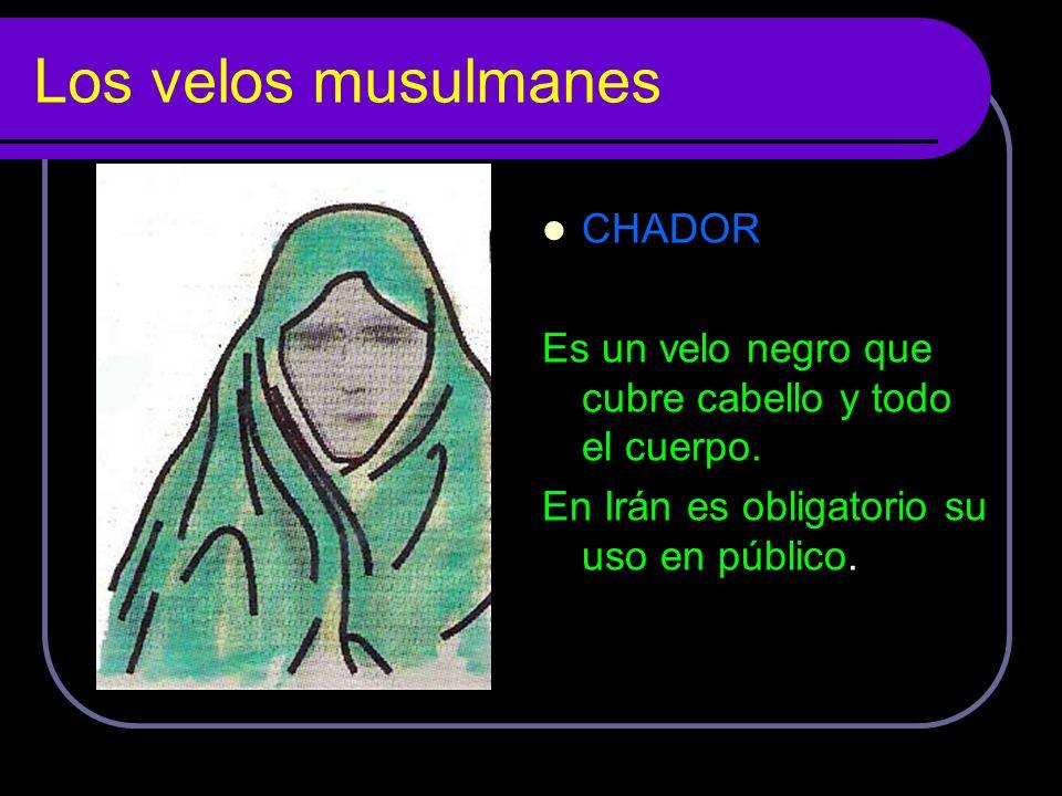 Los velos musulmanes CHADOR